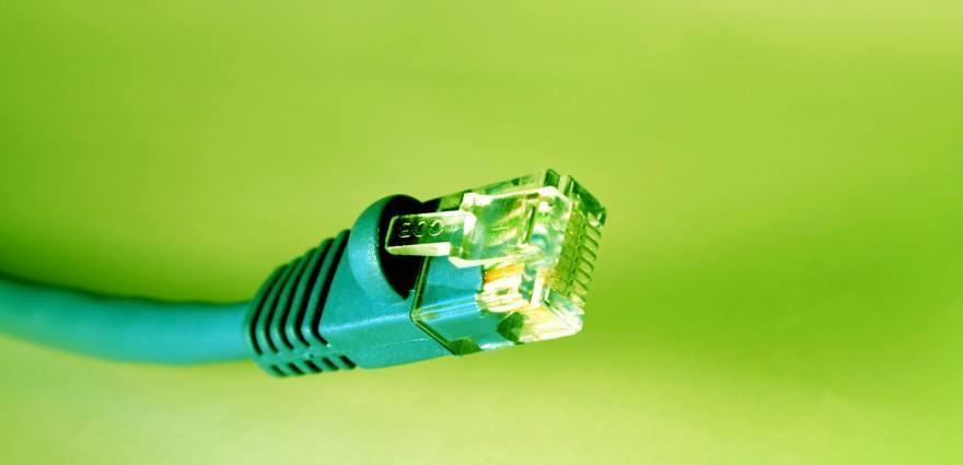 Foto: Grünes Netzwerkkabel