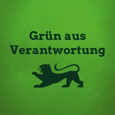 Grünes Wahlprogramm