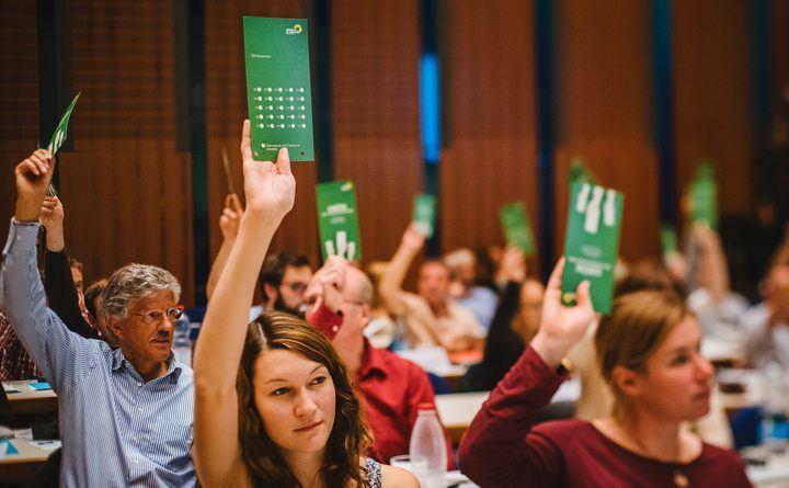 Foto: Abstimmung auf dem Parteitag