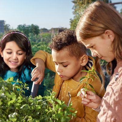 Bildnachweis: Kinder mit Pflanzen