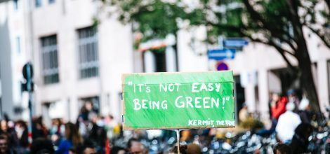 Foto: Demoschild Its not easy being green
