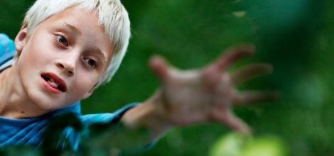 Foto: Junge streckt sich um Apfel zu erreichen